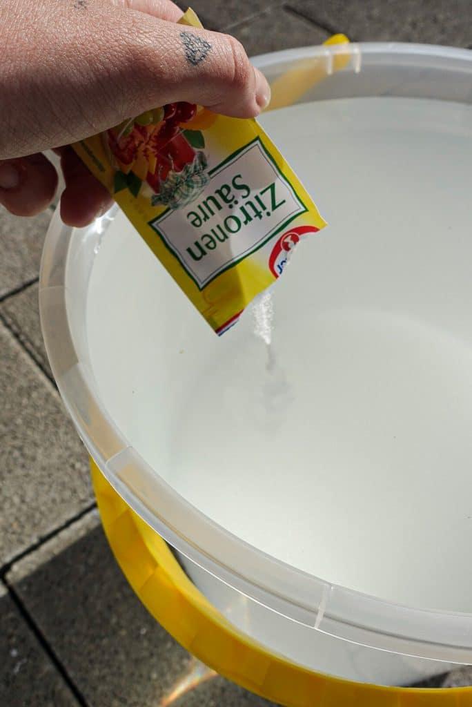 Rezept-Zubereitung-Holunderblütensekt-selbst-gemacht-Rezept-Anleitung-Holunderblüten-Sommergetränk-sekt-diesemary-stuttgart-münchen-hamburg-düsseldorf-Köln-4