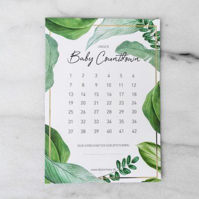 Baby-Countdown-Jungle-Monstera-DieseMary-Design-Notizen-Grafik-Shop-Baby-Pregnancy-Schwangerschaft-pregnant-bekanntgabe-geschenk